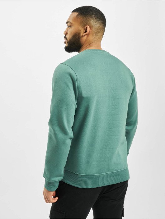 Dickies Pullover New Jersey green