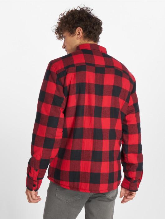 Dickies Shirt Lansdale red