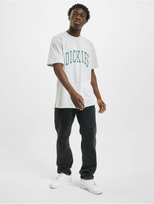 Dickies T-Shirt Aitkin gray