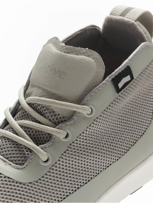 Native Shoes Sneakers AP Rover gray