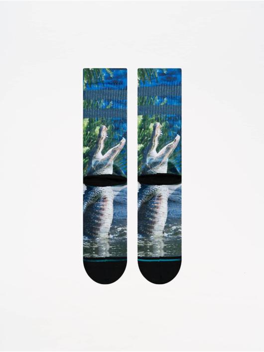 Stance Socks Foundation Alberta blue