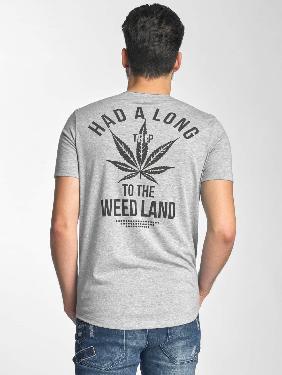 Red Bridge T-Shirt Amsterdam gray