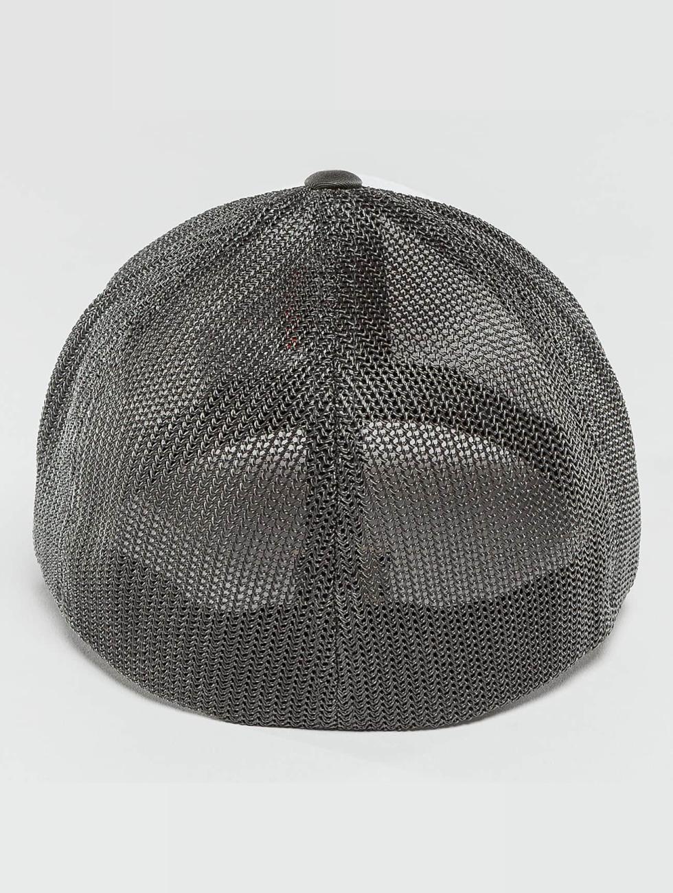 Flexfit Flexfitted Cap Mesh gray