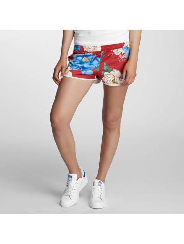 Adidas Originals Shorts Pantalons Femmes Dans Chita Oriental Coloré