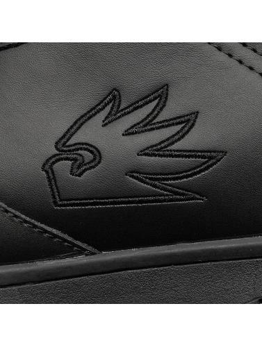nouveau pas cher Vente en ligne Dngrs Baskets Dangereuses Hommes En Noir Petit Logo obtenir Kg9aC2KArR