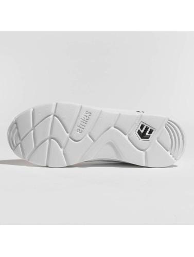 Etnies Sneakers Femmes Scout En Blanc jeu eastbay sortie rabais DofHeaU2nq