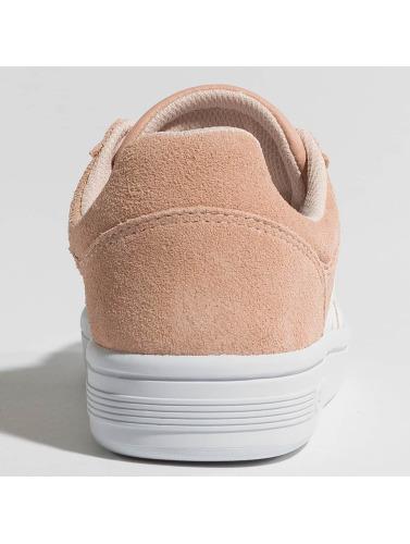 Chaussures De Tribunal Ingénieur Sport Femmes swiss Conception Rose Cheswick K BWorxedC