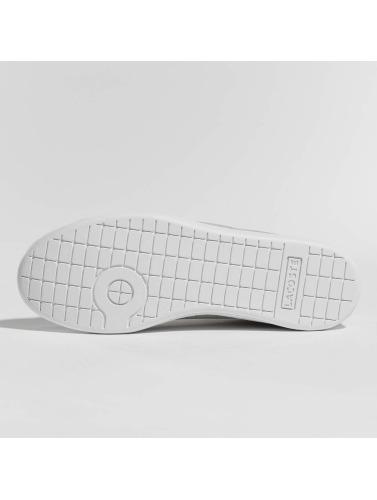Chaussures De Sport Lacoste Dans Carnaby Evo Gris gratuit sites d'expédition vente geniue stockiste où acheter Livraison gratuite 2014 brhAp
