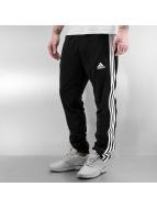 Adidas Boxing MMA Sweat Pant Boxing MMA T16 black