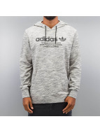 adidas Hoodie PT Graph gray