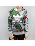 adidas Sweat à capuche multicolore