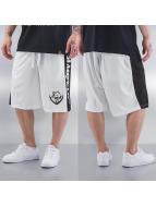 Amstaff Short Cores white