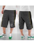 Dangerous DNGRS Shorts grau