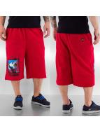 Dangerous DNGRS Shorts rot