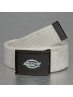 Dickies Belt Orcutt white
