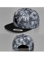 Famous Stars and Straps Snapback Cap black