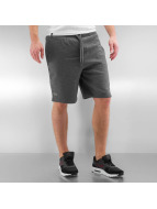 Lacoste Classic Short Classic gray