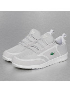 Lacoste Sneakers gray