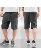 LRG Short grey