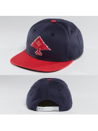 LRG Snapback Cap Treesearch red