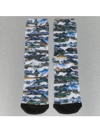 LRG Socks Motherland white