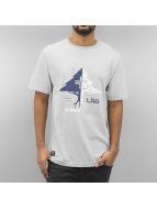 LRG T-Shirt gray