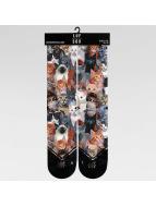 LUF SOX Socks Classics Meow colored