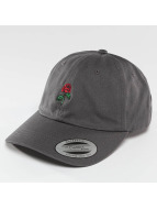 Mister Tee Snapback Cap Rose Dad gray