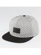 NEFF Snapback Cap Kilted 2 gray