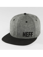 NEFF Snapback Cap Daily Fabric gray