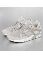 Puma Sneaker grau