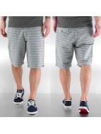 Quiksilver Shorts grau