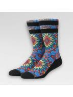 Stance Socks Nayarit colored