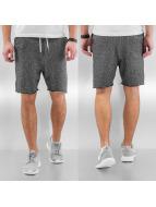 Lewin Sweat Shorts Black...