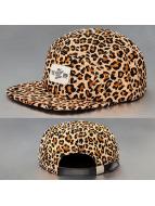 TrueSpin Snapback Cap Cheetah 5 Panel brown