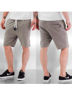 Urban Surface Shorts grau