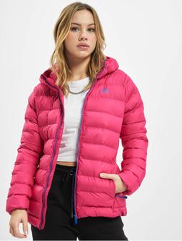 Adidas Originals Syn Fill Jacket Bold Pink/Royal Blue