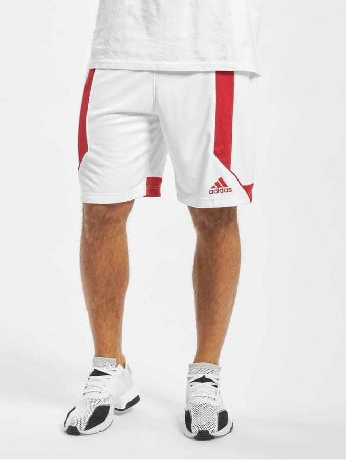 short sport homme adidas