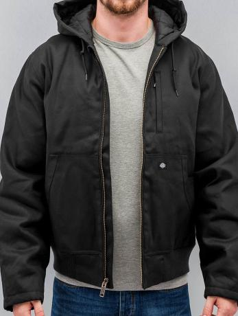 dickies-manner-winterjacke-jefferson-in-schwarz