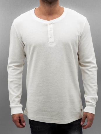 longsleeves-jack-jones-wei-
