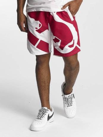 ecko-unltd-manner-shorts-muizenberg-in-wei-