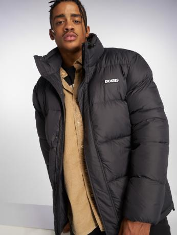 dickies-manner-puffer-jacket-oakvale-down-in-schwarz