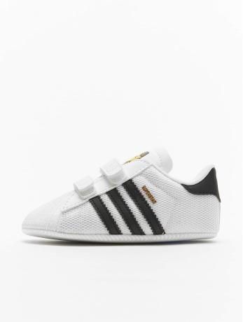 sneakers adidas SUPERSTAR CRIB