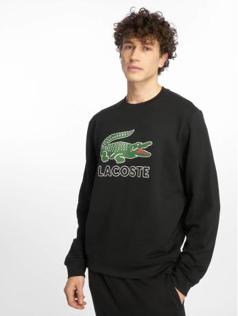 lacoste-manner-pullover-logo-in-schwarz
