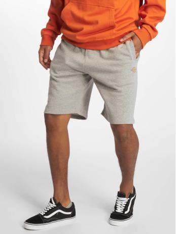dickies-manner-shorts-glen-cove-in-grau