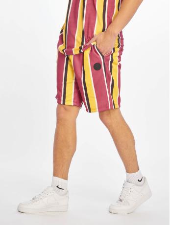 criminal-damage-manner-shorts-marley-in-rot