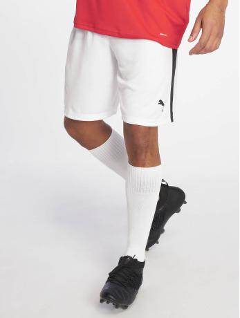puma-performance-manner-shorts-liga-shorts-in-wei-