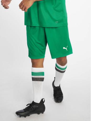 puma-performance-manner-shorts-liga-core-in-grun