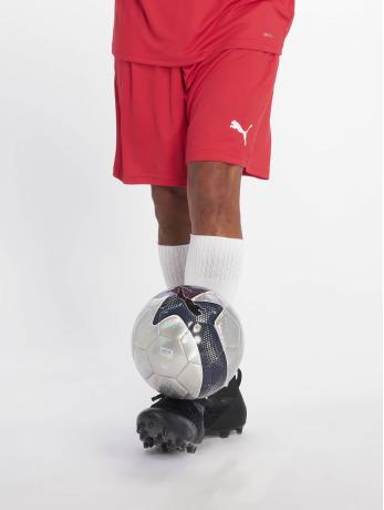 puma-performance-manner-shorts-liga-core-in-rot