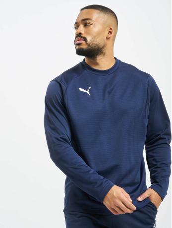 puma-performance-manner-longsleeve-liga-training-in-blau
